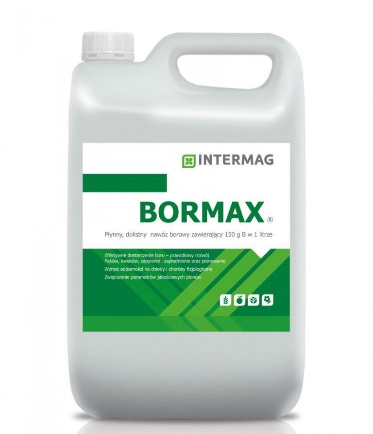bormax-2-768x893